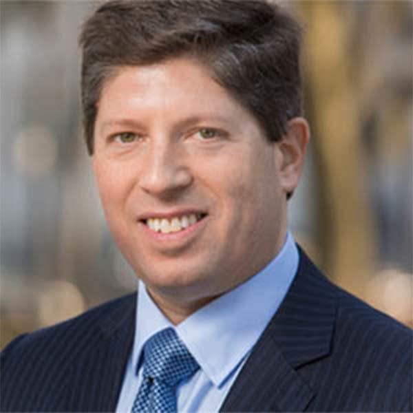 David A. Stein